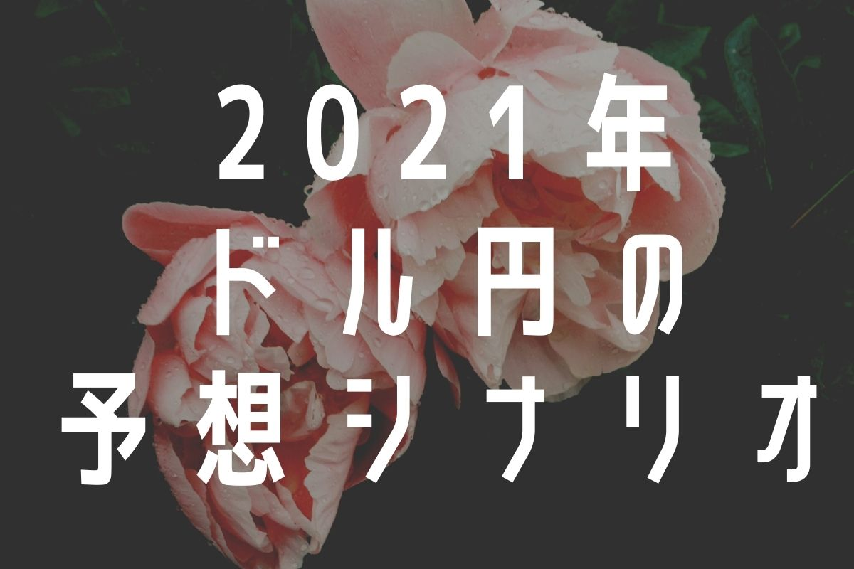 2021年ドル円の予想シナリオ
